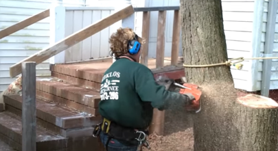 Landscaping and Tree Services - 1