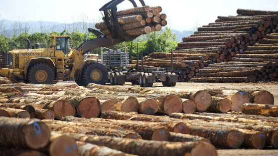 Improving Safety and Communication in the Forestry Industry