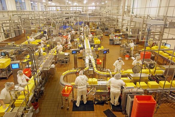 Improving Safety and Communication in the Food Processing Industry